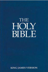 Outreach Bible paperback