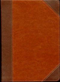 Study Bible Chestnut cover
