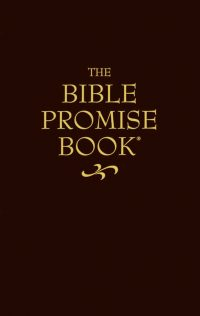 The Bible Promise Book cover