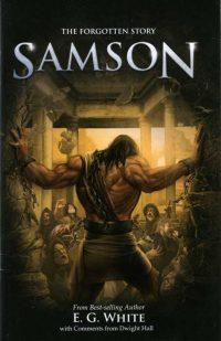 The Forgotten Story Samson cover
