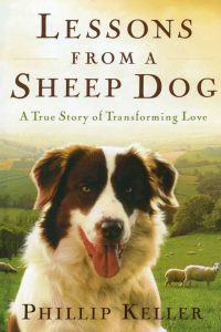 Lessons from a Sheep Dog cover